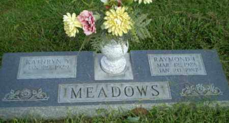 MEADOWS, RAYMOND I - Greene County, Arkansas | RAYMOND I MEADOWS - Arkansas Gravestone Photos