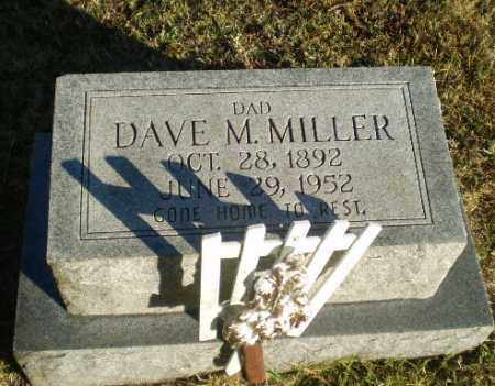 MILLER, DAVE M - Greene County, Arkansas | DAVE M MILLER - Arkansas Gravestone Photos