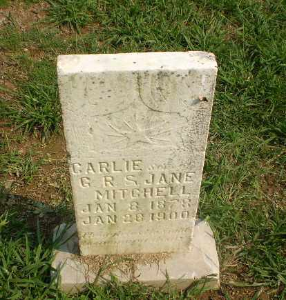 MITCHELL, CARLIE - Greene County, Arkansas | CARLIE MITCHELL - Arkansas Gravestone Photos