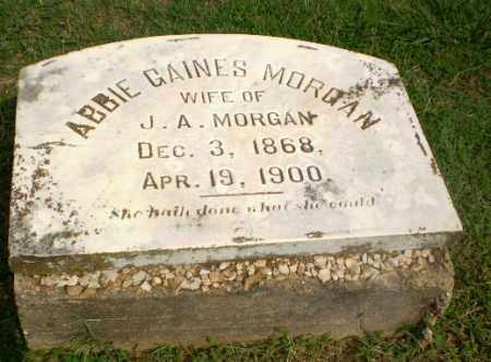 MORGAN, ABBIE - Greene County, Arkansas | ABBIE MORGAN - Arkansas Gravestone Photos