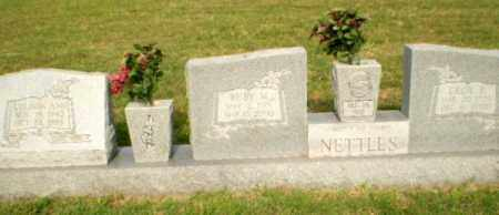 NETTLES, LULINDA ANN - Greene County, Arkansas | LULINDA ANN NETTLES - Arkansas Gravestone Photos
