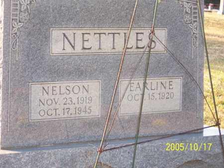 NETTLES, NELSON CONLEY - Greene County, Arkansas | NELSON CONLEY NETTLES - Arkansas Gravestone Photos