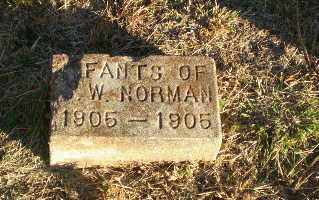 NORMAN, INFANTS - Greene County, Arkansas | INFANTS NORMAN - Arkansas Gravestone Photos