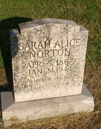 NORTON, SARAH ALICE - Greene County, Arkansas | SARAH ALICE NORTON - Arkansas Gravestone Photos
