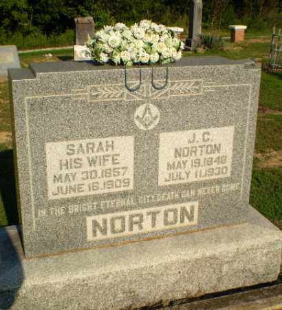 NORTON, SARAH - Greene County, Arkansas | SARAH NORTON - Arkansas Gravestone Photos