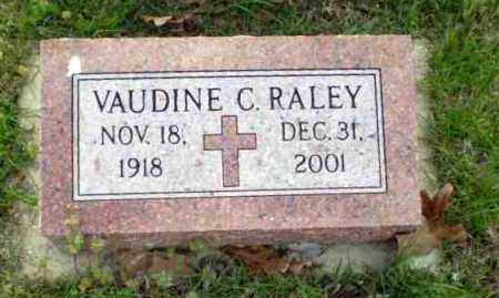 RALEY, VAUDINE C - Greene County, Arkansas | VAUDINE C RALEY - Arkansas Gravestone Photos
