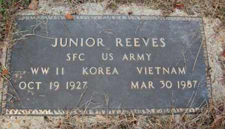 REEVES (VETERAN 3 WARS), JUNIOR - Greene County, Arkansas | JUNIOR REEVES (VETERAN 3 WARS) - Arkansas Gravestone Photos