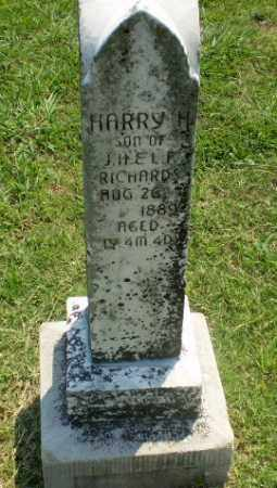 RICHARDS, HARRY H. - Greene County, Arkansas | HARRY H. RICHARDS - Arkansas Gravestone Photos