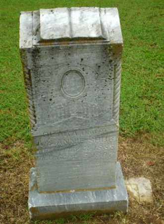 SCHUG, CLARA - Greene County, Arkansas | CLARA SCHUG - Arkansas Gravestone Photos