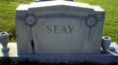 SEAY FAMILY STONE,  - Greene County, Arkansas |  SEAY FAMILY STONE - Arkansas Gravestone Photos