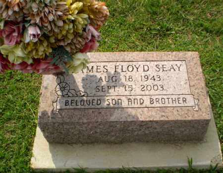 SEAY, JAMES FLOYD - Greene County, Arkansas | JAMES FLOYD SEAY - Arkansas Gravestone Photos