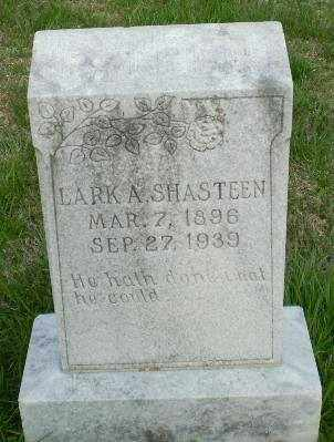 SHASTEEN, LARK - Greene County, Arkansas | LARK SHASTEEN - Arkansas Gravestone Photos