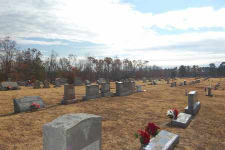 *OVERVIEW,  - Greene County, Arkansas |  *OVERVIEW - Arkansas Gravestone Photos