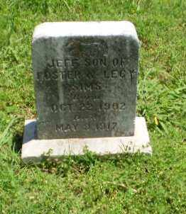 SIMS, JEFF - Greene County, Arkansas | JEFF SIMS - Arkansas Gravestone Photos