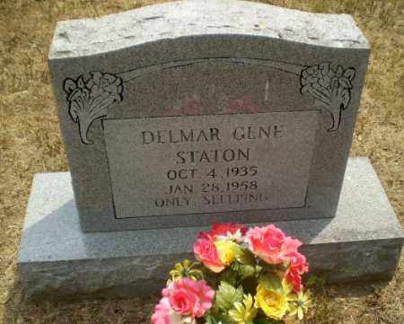 STATON, DELMAR GENE - Greene County, Arkansas | DELMAR GENE STATON - Arkansas Gravestone Photos