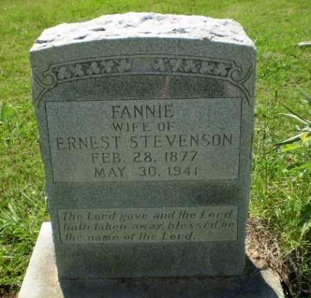 STEVENSON, FANNIE - Greene County, Arkansas | FANNIE STEVENSON - Arkansas Gravestone Photos