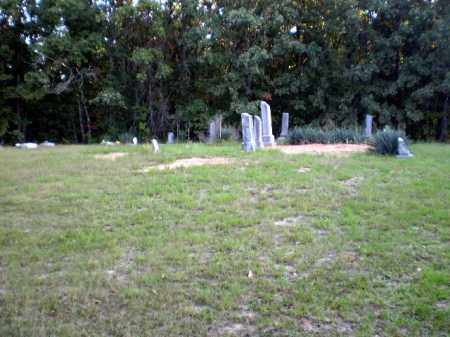*TOELKEN CEMETERY, VIEW - Greene County, Arkansas | VIEW *TOELKEN CEMETERY - Arkansas Gravestone Photos