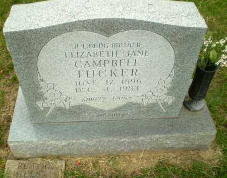 CAMPBELL TUCKER, ELIZABETH JANE - Greene County, Arkansas | ELIZABETH JANE CAMPBELL TUCKER - Arkansas Gravestone Photos