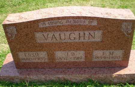 VAUGHN, F.M. - Greene County, Arkansas | F.M. VAUGHN - Arkansas Gravestone Photos