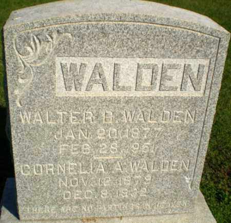 WALDEN, WALTER B - Greene County, Arkansas | WALTER B WALDEN - Arkansas Gravestone Photos