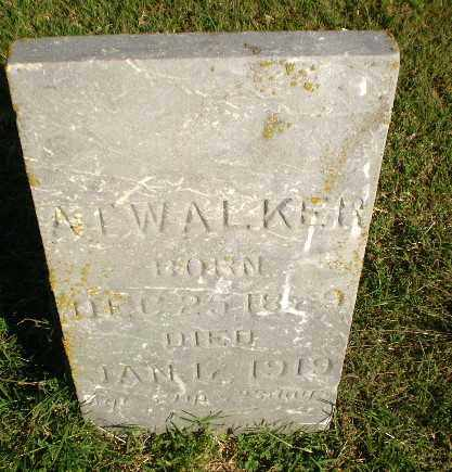 WALKER, A.T. - Greene County, Arkansas | A.T. WALKER - Arkansas Gravestone Photos