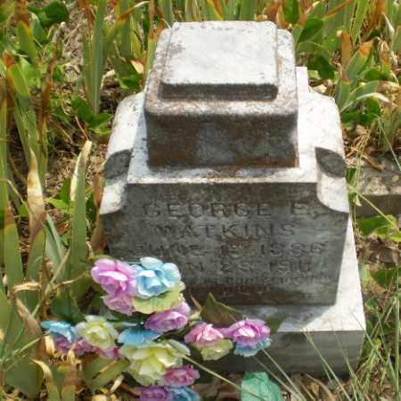 WATKINS, GEORGE E - Greene County, Arkansas | GEORGE E WATKINS - Arkansas Gravestone Photos