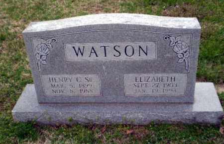 WATSON, HENRY C - Greene County, Arkansas | HENRY C WATSON - Arkansas Gravestone Photos