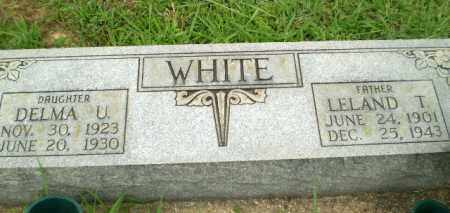 WHITE, LELAND T - Greene County, Arkansas | LELAND T WHITE - Arkansas Gravestone Photos