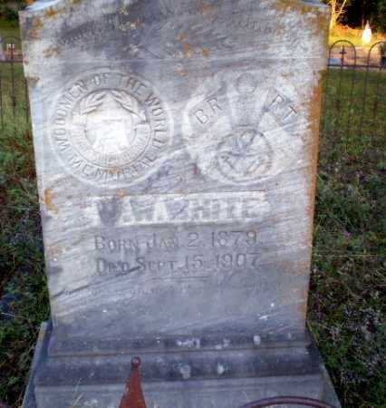 WHITE, W.W. - Greene County, Arkansas | W.W. WHITE - Arkansas Gravestone Photos