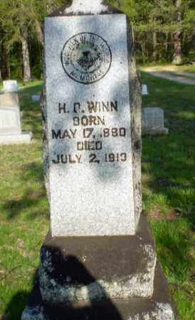WINN, H D - Greene County, Arkansas | H D WINN - Arkansas Gravestone Photos