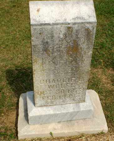 WOLFE, CHARLIE E - Greene County, Arkansas | CHARLIE E WOLFE - Arkansas Gravestone Photos