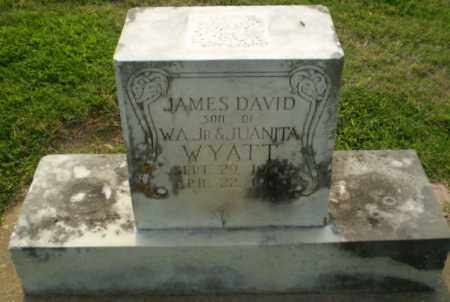 WYATT, JAMES DAVID - Greene County, Arkansas | JAMES DAVID WYATT - Arkansas Gravestone Photos