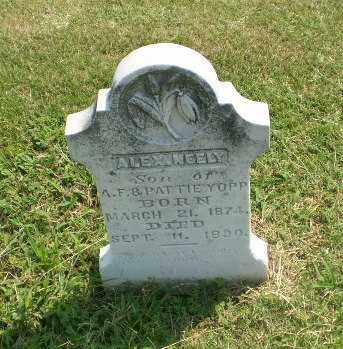 YOPP, ALEX NEELY - Greene County, Arkansas | ALEX NEELY YOPP - Arkansas Gravestone Photos