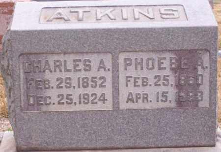 ATKINS, CHARLES A - Hempstead County, Arkansas | CHARLES A ATKINS - Arkansas Gravestone Photos