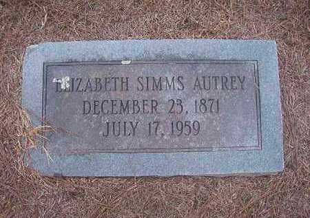 SIMMS AUTREY, ELIZABETH - Hempstead County, Arkansas | ELIZABETH SIMMS AUTREY - Arkansas Gravestone Photos
