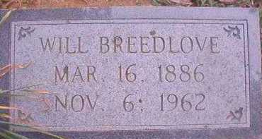 BREEDLOVE, WILL - Hempstead County, Arkansas | WILL BREEDLOVE - Arkansas Gravestone Photos