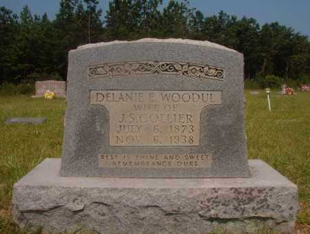 COLLIER, DELANIE E - Hempstead County, Arkansas | DELANIE E COLLIER - Arkansas Gravestone Photos