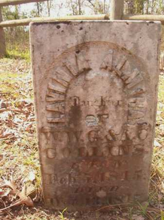 COLLINS, LAVINIA ALMIRA - Hempstead County, Arkansas | LAVINIA ALMIRA COLLINS - Arkansas Gravestone Photos