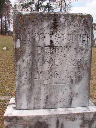 DELONY, ALGHYNY - Hempstead County, Arkansas | ALGHYNY DELONY - Arkansas Gravestone Photos