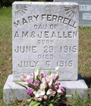 FERRELL, MARY - Hempstead County, Arkansas | MARY FERRELL - Arkansas Gravestone Photos