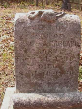 GARLAND, JENNIE - Hempstead County, Arkansas | JENNIE GARLAND - Arkansas Gravestone Photos