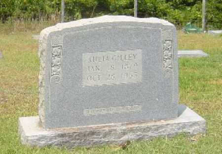 GILLEY, JULIA - Hempstead County, Arkansas | JULIA GILLEY - Arkansas Gravestone Photos