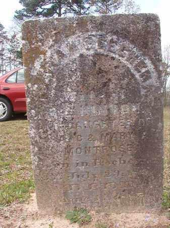 MONTROSE HINTON, SARAH BEECHER - Hempstead County, Arkansas   SARAH BEECHER MONTROSE HINTON - Arkansas Gravestone Photos