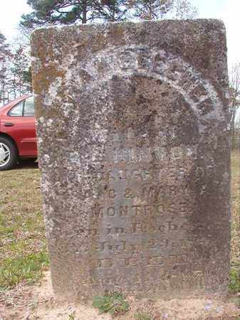 MONTROSE HINTON, SARAH BEECHER - Hempstead County, Arkansas | SARAH BEECHER MONTROSE HINTON - Arkansas Gravestone Photos