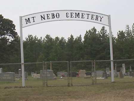 *MOUNT NEBO CEMETERY GATE,  - Hempstead County, Arkansas |  *MOUNT NEBO CEMETERY GATE - Arkansas Gravestone Photos