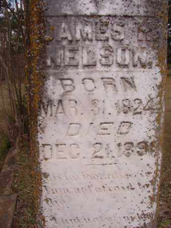 NELSON, JAMES H - Hempstead County, Arkansas | JAMES H NELSON - Arkansas Gravestone Photos