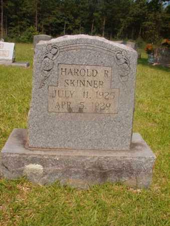 SKINNER, HAROLD R - Hempstead County, Arkansas | HAROLD R SKINNER - Arkansas Gravestone Photos