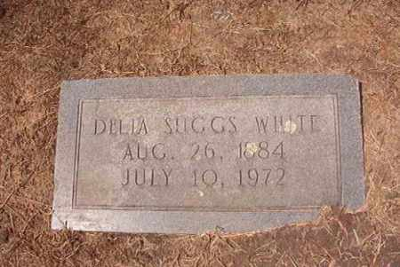 WHITE, DELIA - Hempstead County, Arkansas | DELIA WHITE - Arkansas Gravestone Photos