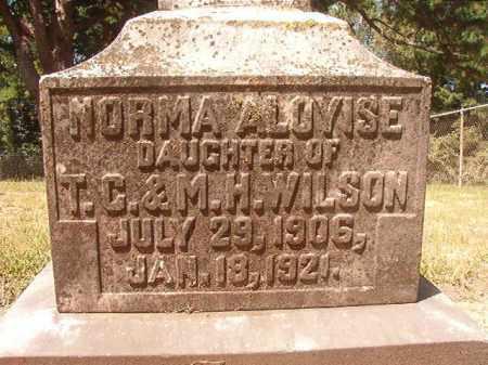 WILSON, NORMA ALOYISE - Hempstead County, Arkansas | NORMA ALOYISE WILSON - Arkansas Gravestone Photos