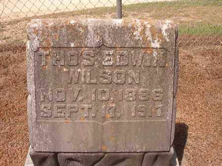 WILSON, THOMAS EDWIN - Hempstead County, Arkansas | THOMAS EDWIN WILSON - Arkansas Gravestone Photos